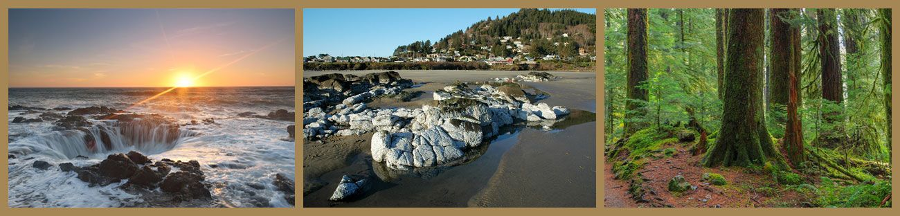 Triptych of Images from the Area Around Our Yachats Development